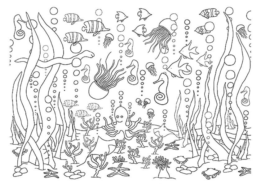 underwater coloring pages 5 Underwater Coloring Pages   diy Thought underwater coloring pages