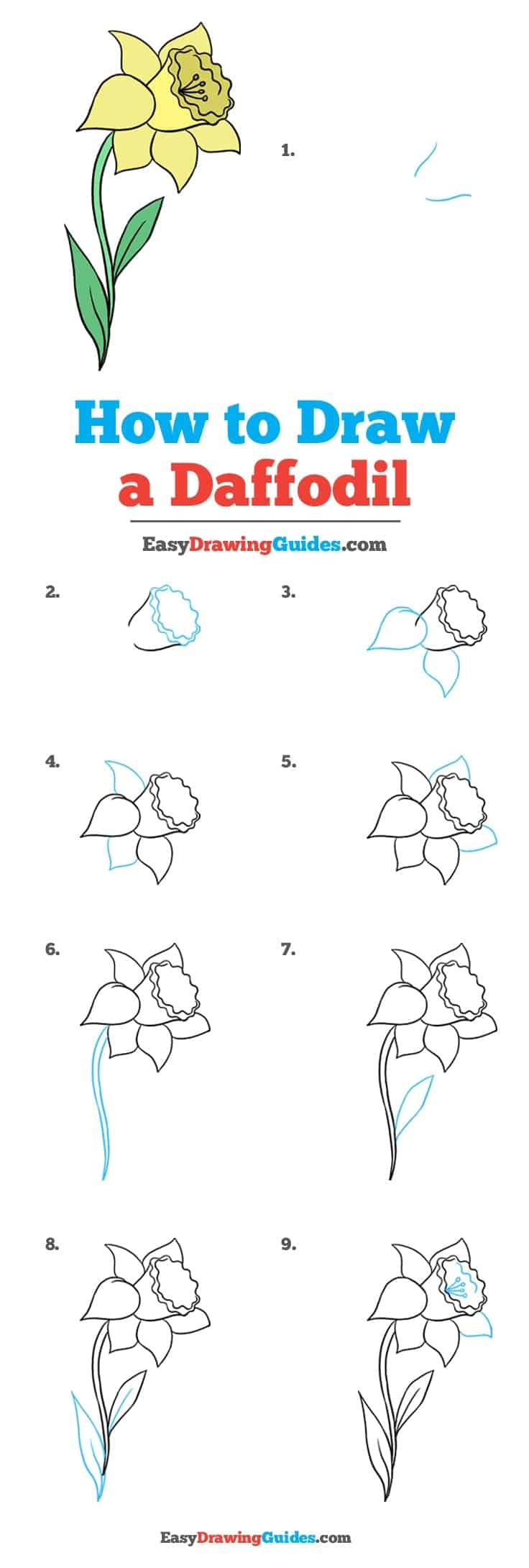 How to draw flowers diy thought the beautiful daffodil is a sign of spring newborn lambs and the hope for warmer weather another amazing step by step tutorial from easy drawing guides izmirmasajfo